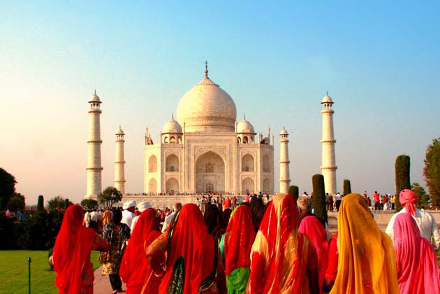 The Golden Triangle and Indian Wildlife
