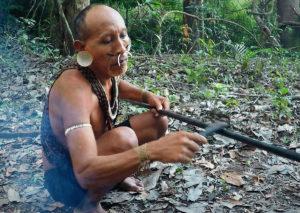 Matis - Amazon 2
