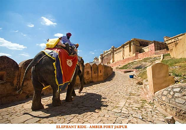 Elephant Ride - Amber Fort Jaipur