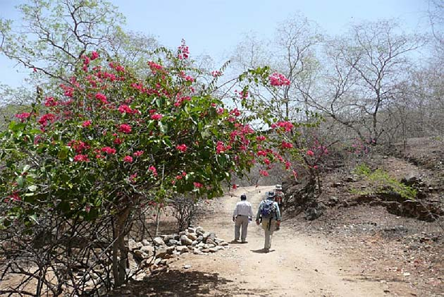 walk from Dhudh Talai to Maachla Magra