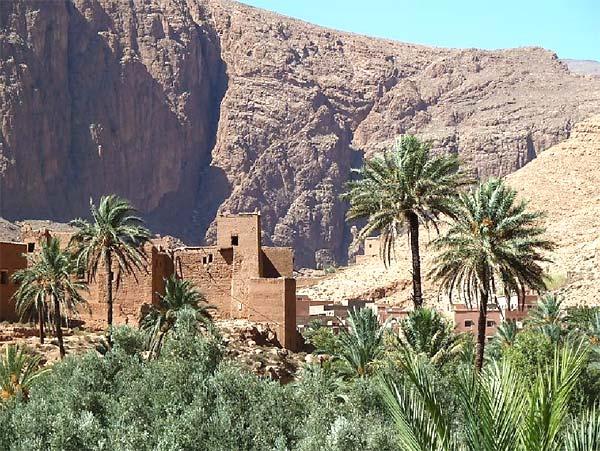Ramlia Oasis, Morocco