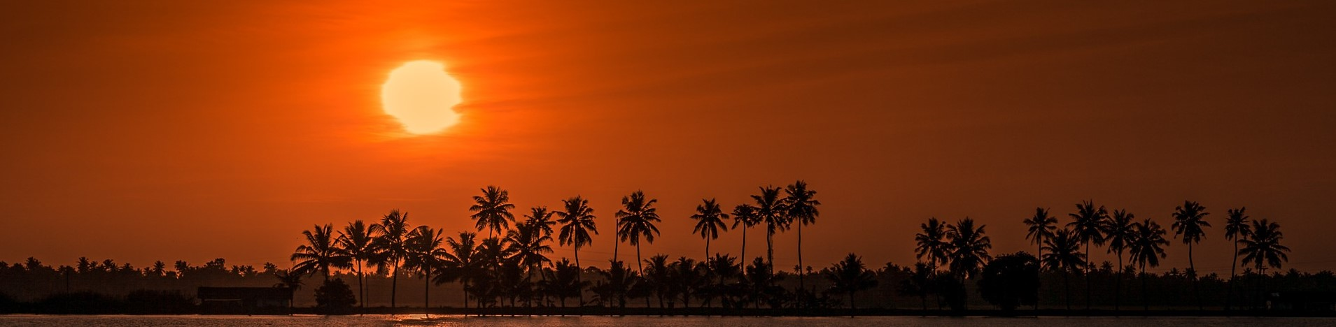 Kerala and Sri Lanka: Coastal Delights